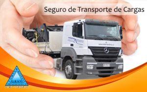 04Seguro de Transportes de Cargas